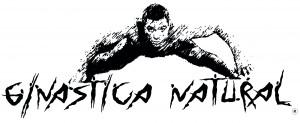GN Logo schwarz mit alvaro