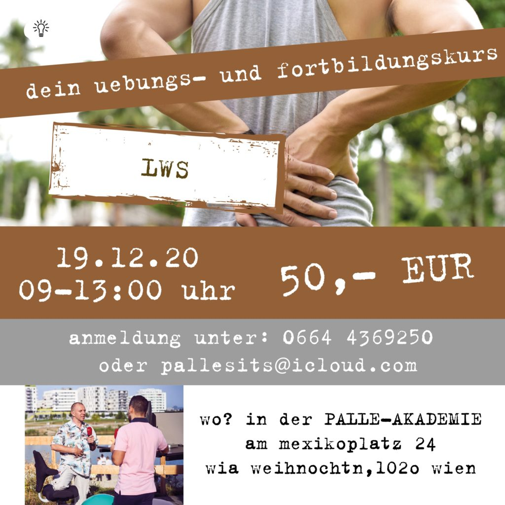 lws-workshop-physiotherapie-wien-romanpallesits-palle-akademie