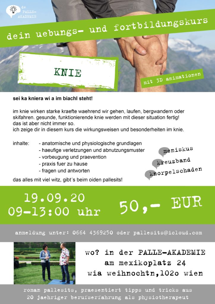 knie-workshop-physiotherapie-wien-romanpallesits-palle-akademie