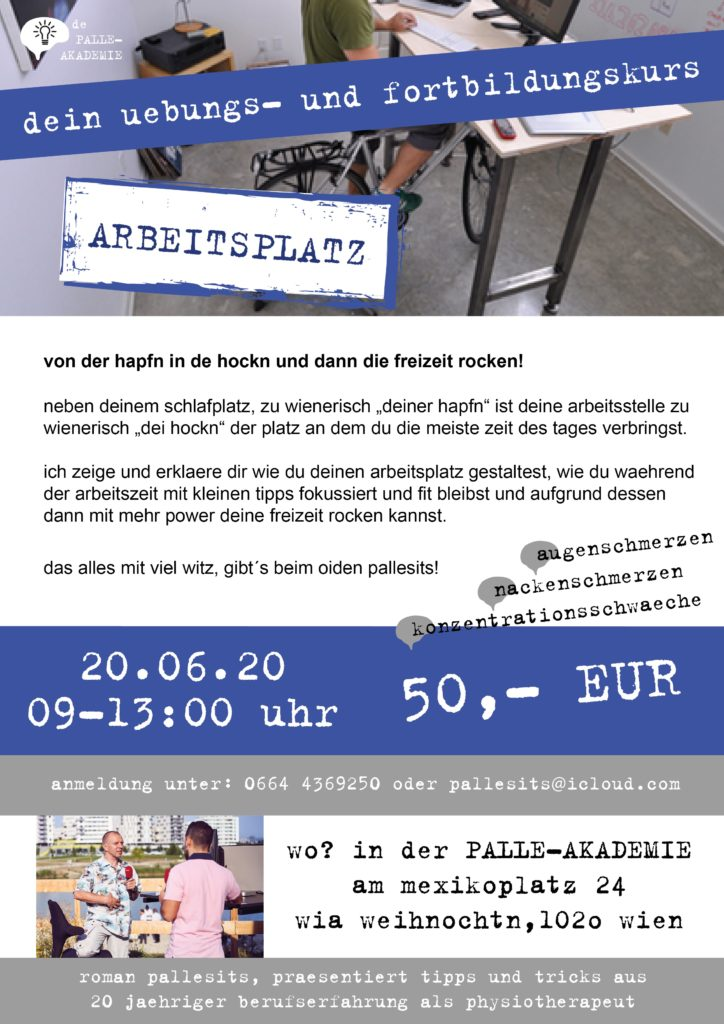 arbeitsplatz-workshop-physiotherapie-wien-romanpallesits-palle-akademie